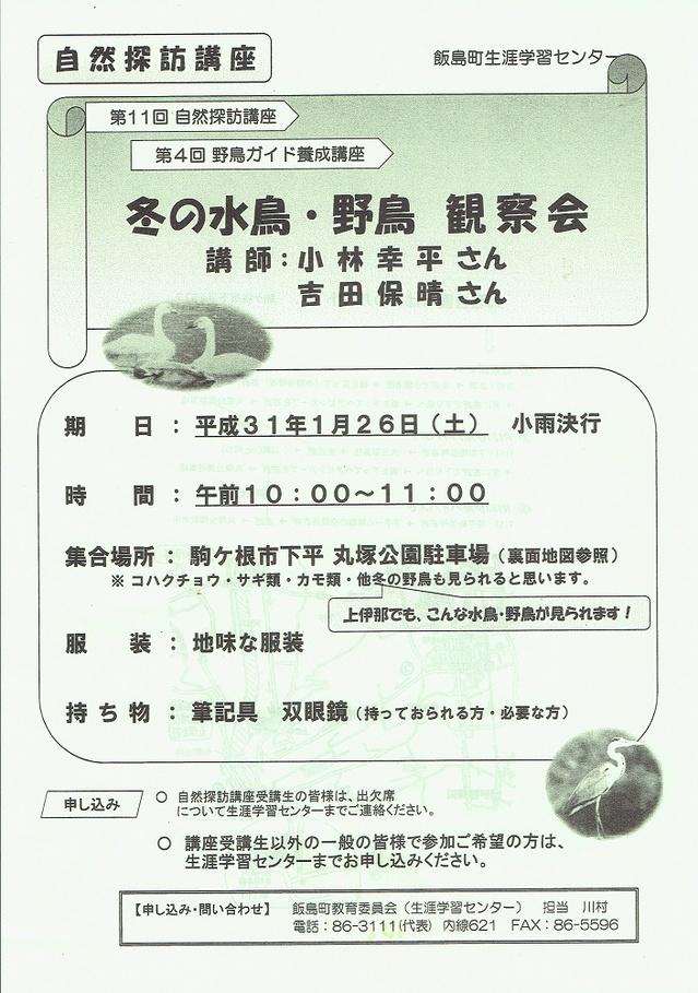 20190126飯島冬の水鳥野鳥観察会.jpg
